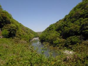 Tamanogawa