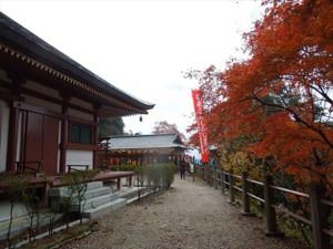 Horaijihondo