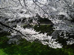 Nishinomarutudumi