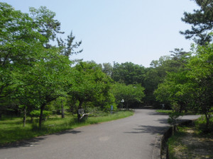 Obataryokuchi