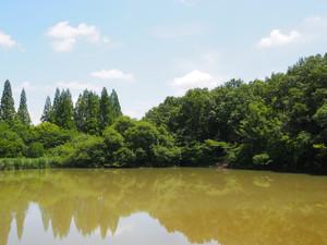 Chayagasakapark