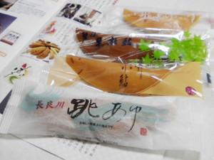 Ayugashi