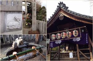 Hitsujishrine2