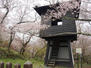 Taikoyagura
