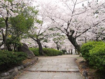 Tsurumapark2