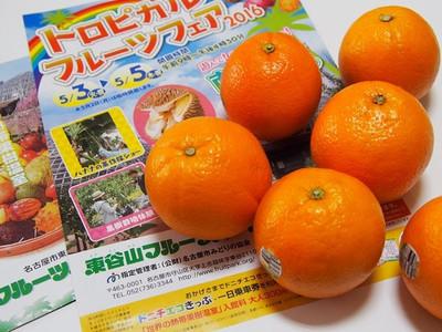 Tropicalfruitfare2016