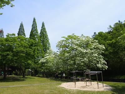 Toshinomori2