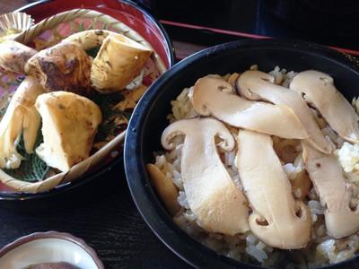 Matsutaketeisyoku