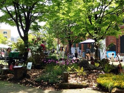 Gardenlive