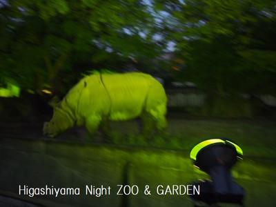 Nightzoo