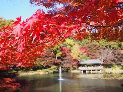 Higashiyamapark