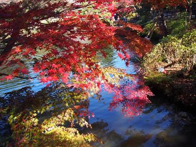 Higashiyamapark2