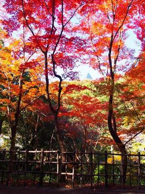 Higashiyamapark3