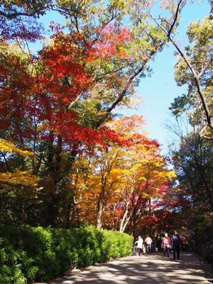 Higashiyamapark4