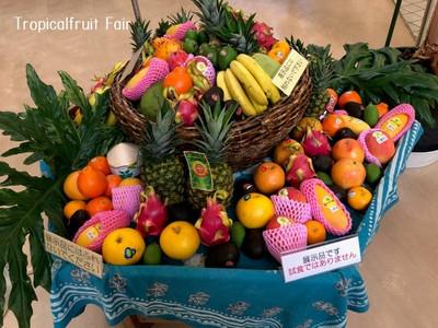 Tropicalfruitfair
