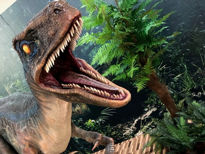 Raptor3