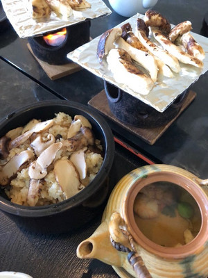 Matsutaketeishoku