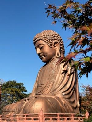 Syurakuendaibutsu2